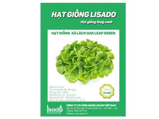 Hạt giống xà lách Oak Leaf xanh